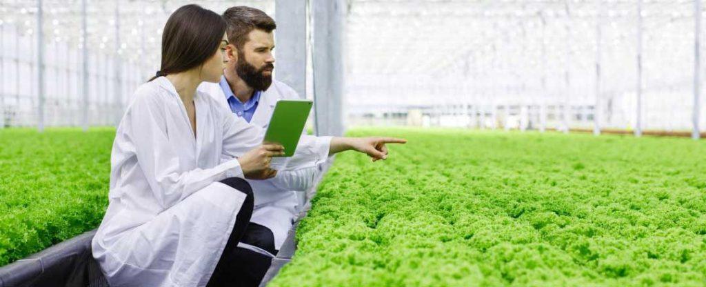 mejores-master-ingenieria-agronoma